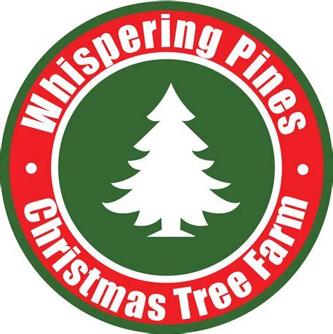 christmas tree farm miltin fl tree farms near milton fl beatiful tree