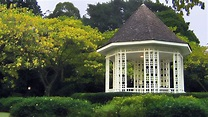 Singapore Botanic Gardens   Things to do in Tanglin, Singapore