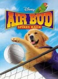 airbud  superstar air bud spikes  stream complet vf