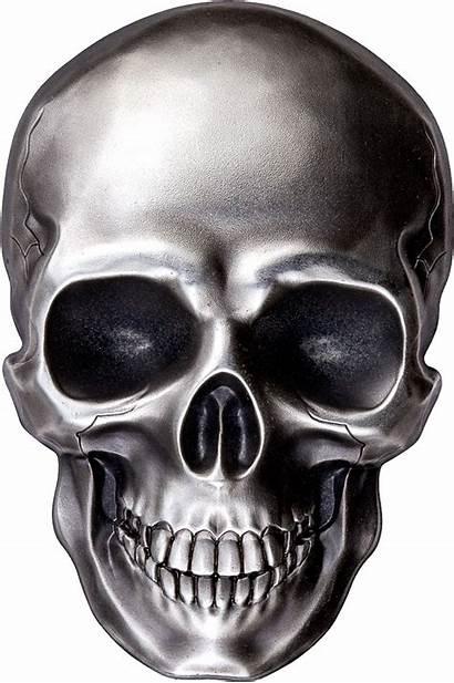 Skull Human Kb Tengkorak