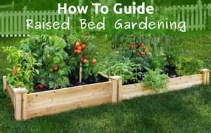 Raised Garden Beds Plastic