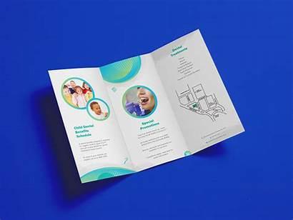 Tri Brochure Fold Mockups Psd