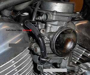 Carburetor Hose Routing