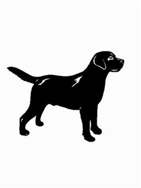 hund labrador retriever ausmalbild malvorlage hunde