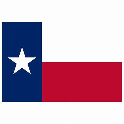 Texas Flag Icon Tx Business Cards Card