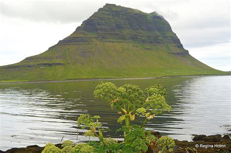Mt Kirkjufell And Kirkjufellsfoss In Grundarfjörður The