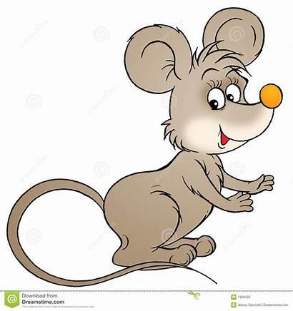 Mouse Clip Illustration Fairy Album Dreamstime