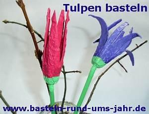 Basteln Mit Eierkartons Frühling : tulpen mit kindern basteln basteln rund ums jahr ~ Frokenaadalensverden.com Haus und Dekorationen