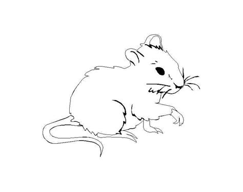 mouse   color  kids mouse kids coloring pages