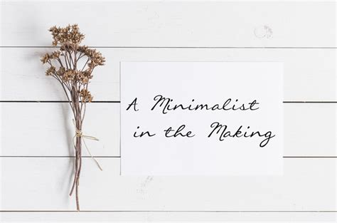 Real Life Minimalists A Minimalist In The Making