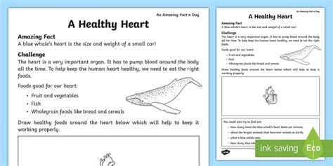a healthy heart worksheet worksheet amazing fact of