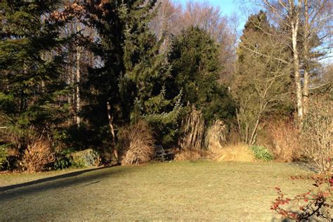 Gartenarbeit Im Januar Und Februar