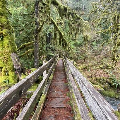 Staircase Olympic National Park Reviewed 18th January