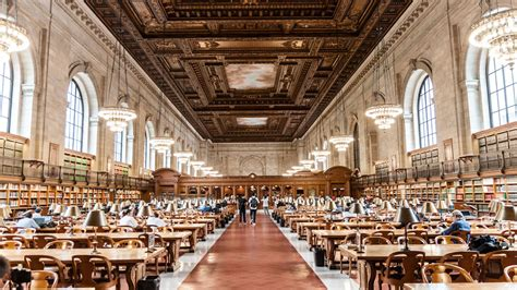 The Library Whisperer - Curbed