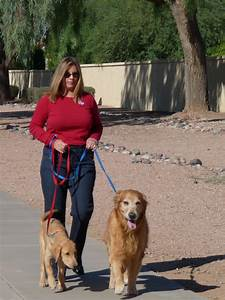 Dog walker gilbert and surrounding areas tlc pet sitter for Professional dog walking service