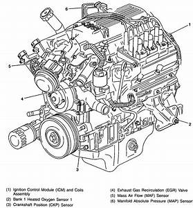 97 3800 V6 Firebird Engine Diagram 2001 Chevy Impala Engine Diagram Wiring Diagram