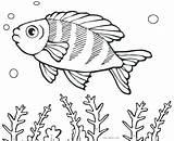 Fish Coloring Pages Cartoon Fishing Printable Saltwater Getcolorings Puffer Boy Tropical Flower Colorin Cool2bkids Colorings Getdrawings Template Fisherman Shape Ray sketch template