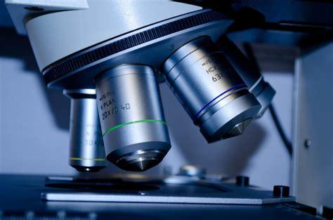 polarized light microscopy asbestos testing  ae