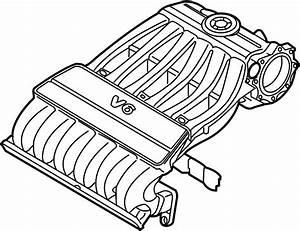 Volkswagen Passat Engine Intake Manifold Gasket  3 6 Liter