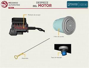 Renault Master Wiring Diagram Taller