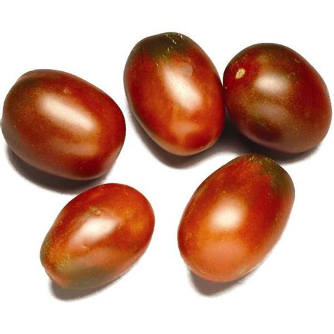 pomodoro ciliegino in vaso pianta di pomodoro ovale mini nero in vaso kmzerogarden