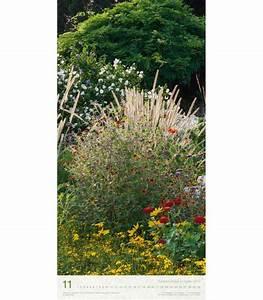 Gräser Im Garten : wandkalender gr ser im garten ls 2016 wandkalender gr ser ~ Lizthompson.info Haus und Dekorationen