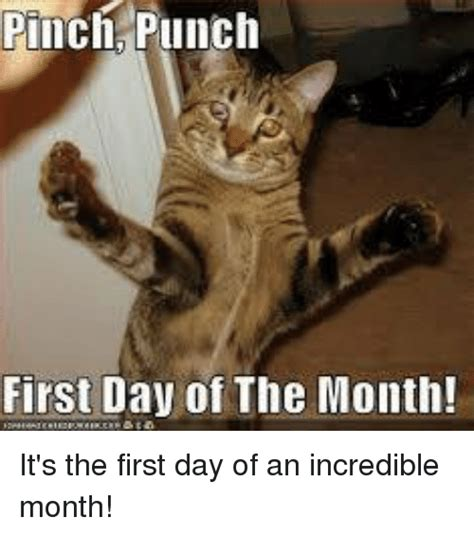 1st Of The Month Meme - pinch punch first day of the month it s the first day of an incredible month meme on me me