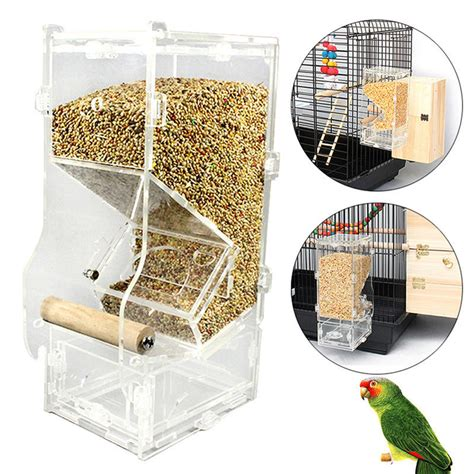online buy wholesale automatic parrot feeder from china