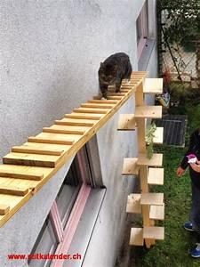 Bewässerungssystem Balkon Selber Bauen : katzenleiter f r balkon fabelhaft balkon bepflanzen balkon vorhang wohndesign ideen ~ Whattoseeinmadrid.com Haus und Dekorationen