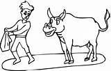 Coloring Bull Toros Colorear Toro Dibujos Torero Matador Dibujo Druku Colorir Korrida Template Torrero Stier Corrida Cleo Pintar Rodeo Touros sketch template