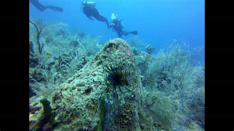florida keys scuba diving youtube