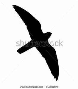 Silhouette Falcon Flight Can Be Used Stock Vector ...