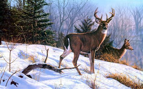 deer art nature paintings winter wallpapers hd
