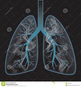 Smoke Inside The Lung Stock Photography