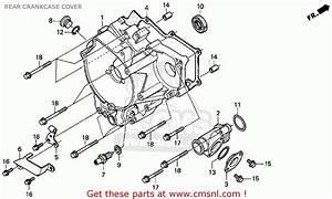 Honda Rincon 650 Fuse Box