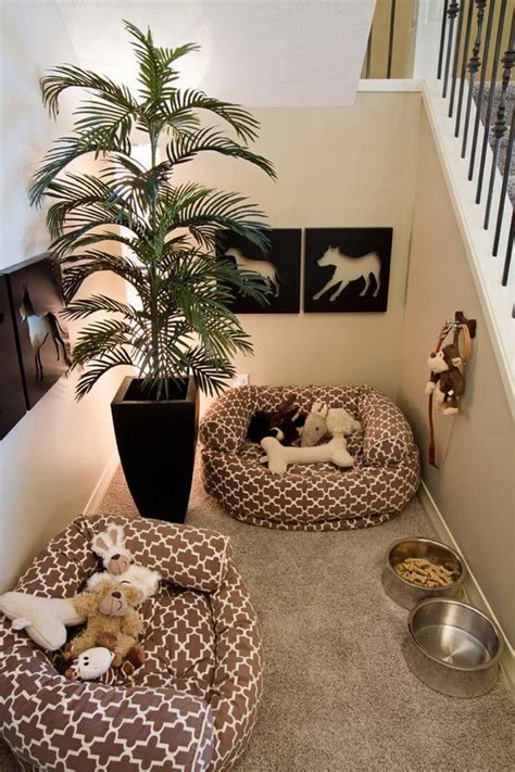 pet friendly homes  house designs  dogs cats