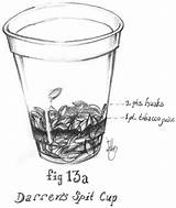 Spit Cup Sketch Drawing Rate sketch template