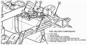 Dr Fuel Filter    Regulator    Pump