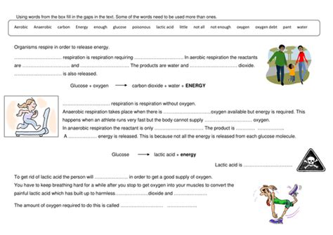 anaerobic respiration by ewula teaching resources tes