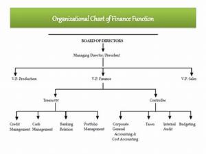 Financial Controller Organizational Chart Introduction To Financial Management