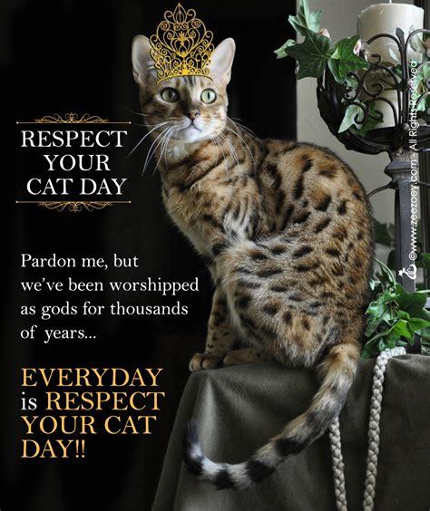 r e s p e c t the cat for respect your cat day zee