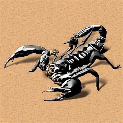 scorpion web design scorpion 187 illustrations 187 portfolio 187 perfecto web