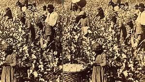 King Of Cotton : king cotton saves the south youtube ~ Nature-et-papiers.com Idées de Décoration