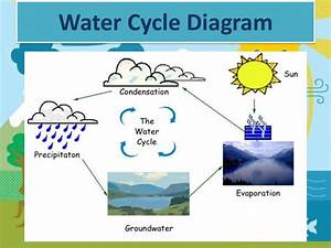 O U0026 39 Neill  Molly The Water Cycle