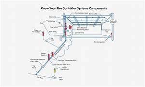 Fire Sprinkler System Design