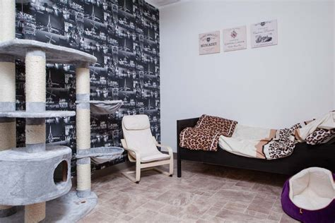 London Themed Bedroom by Hotel Cat Luxury Cattery For Hampshire And London