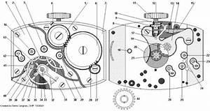 Watchmaker Supplies Blog