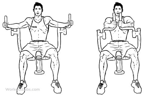 Pec Deck Chest Exercise by Butterfly Pec Deck Seated Machine Fly Illustrated