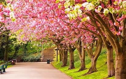 Spring Wallpapers Nature Desktop Background Awesome Pretty