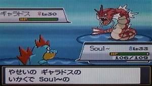 Poku00e9mon Soul Silver Walkthrough Part 27 My First Shiny